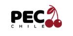 Consultora frutícola industria del Cerezo pec chile